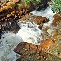黃黃的水~黃黃的岩石