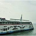 這裡就是海鷗船 遊覽車可以直接開上去