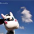牛牛和天空真搭