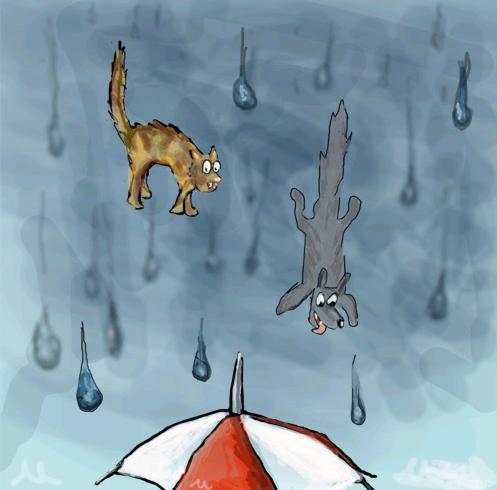 rainingday.JPG