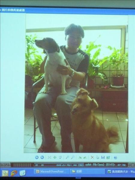 小吳與他的犬女們