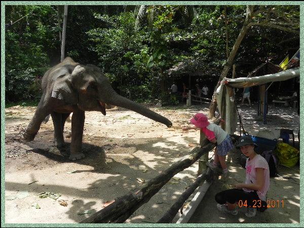 騎象.jpg