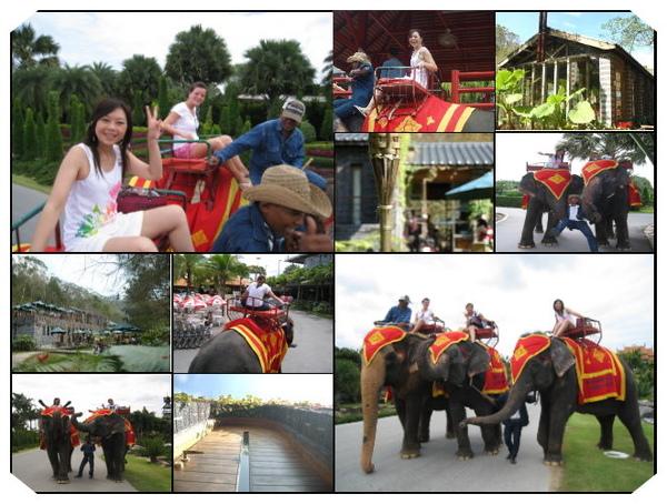 東芭樂園騎象.jpg