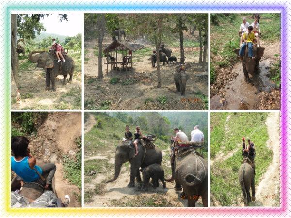 騎大象.jpg