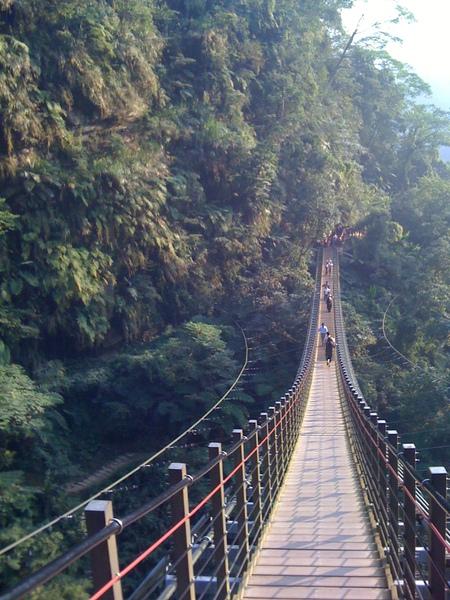 0981212-竹山天梯 (17).jpg