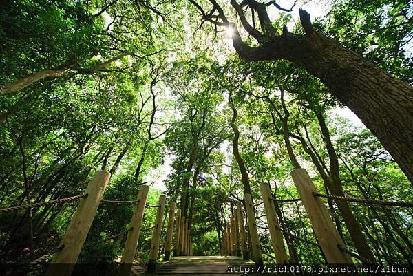 東森一萬五千坪生態園區