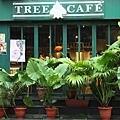 tree cafe01.JPG