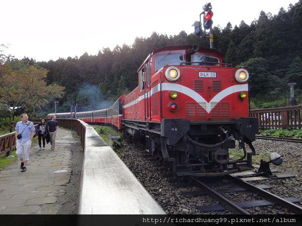 阿里山森林小火車.jpg