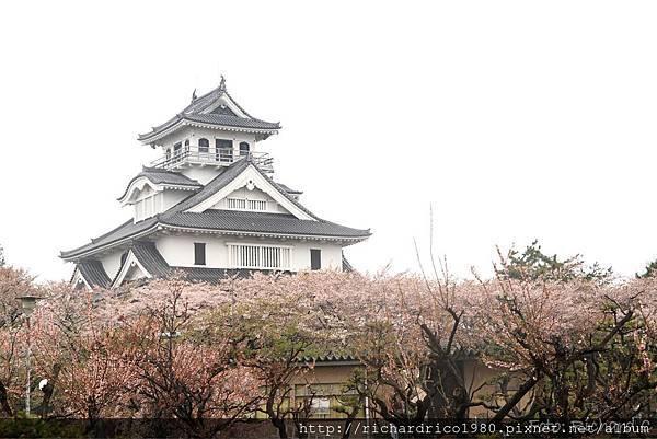 1030418-japan203R.jpg