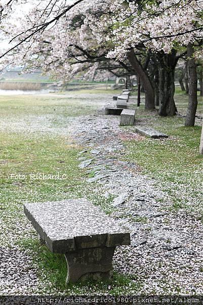1030418-japan169R