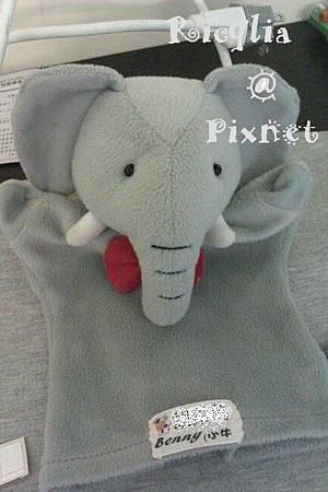 小象.jpg