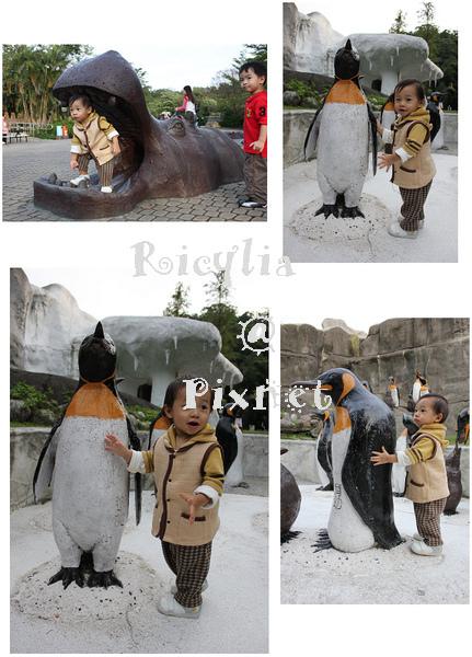 企鵝跟河馬.jpg