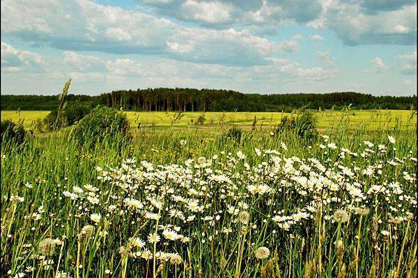_origin_Latvijas-Daba-20.jpg