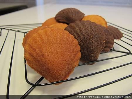 雙色貝殼蛋糕