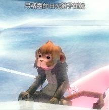 猴子6.jpg