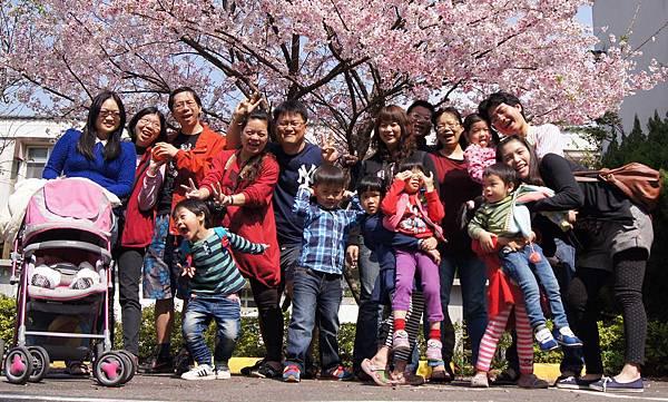 陽明山櫻花4