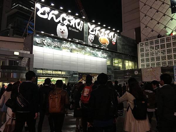 G-0330-居酒屋 (23).JPG