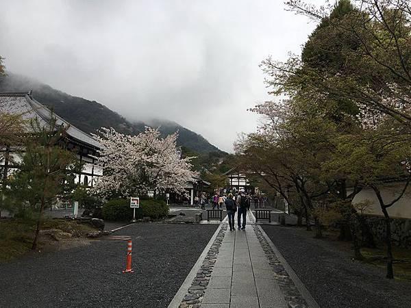 0404-嵐山天龍寺 (13).JPG