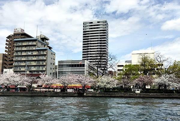 0403-大阪水上巴士 (9).JPG