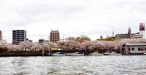0403-大阪水上巴士 (61).JPG