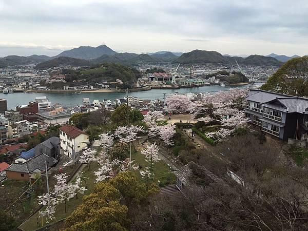 0405-尾道千光寺 (12).JPG