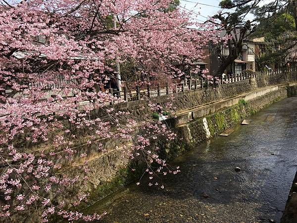 TOWN-0409-高山 (1).JPG