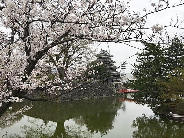 0410-松本城 (37).JPG