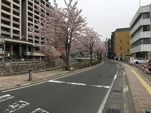 TOWN-0410松本 (4).JPG