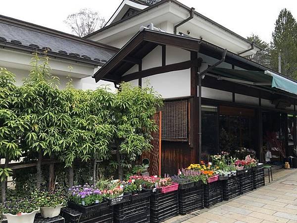 TOWN-0410松本 (29).JPG
