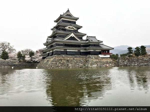 松本城5.jpg