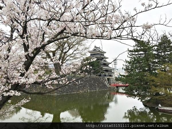 松本城10.jpg