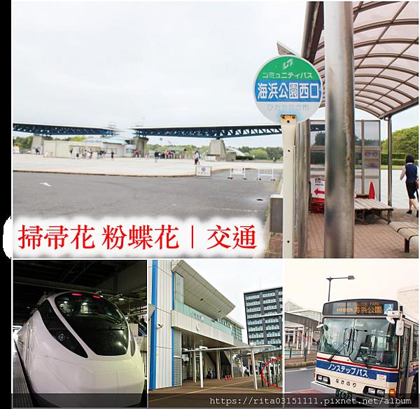 1.海濱公園交通拼貼+字.png