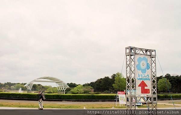 水仙-batch_6176660128_IMG_4562-01.jpg