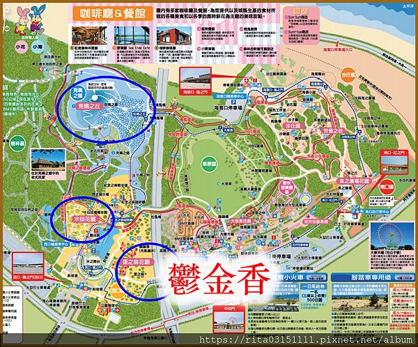 1.地圖-鬱金香.png