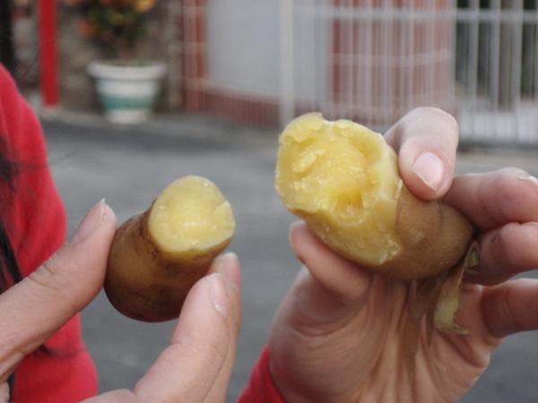 好吃的小蕃薯