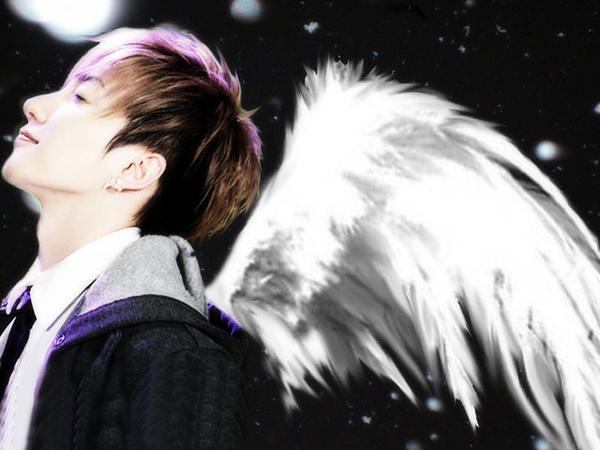 天使特.jpg