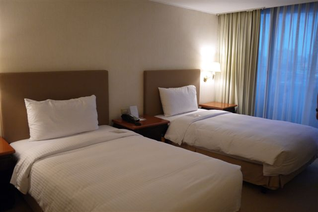 王朝大酒店 (3).JPG