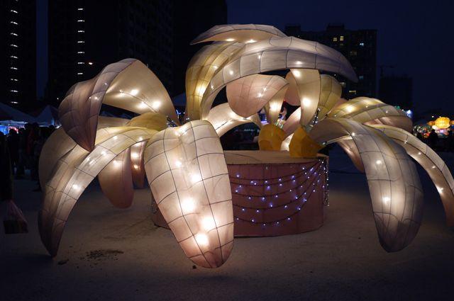 台灣燈會 (1).JPG