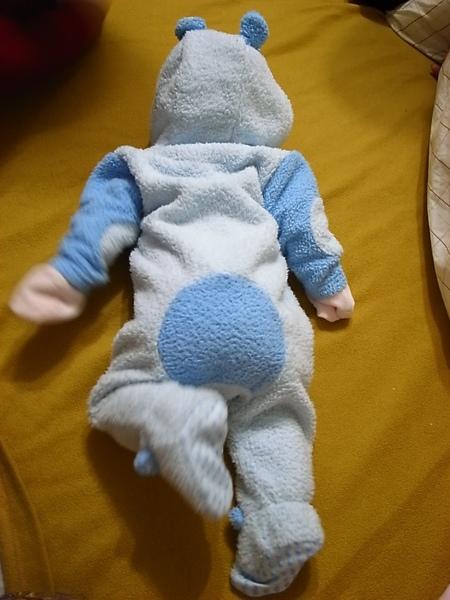 [3M]小熊新裝背面.JPG