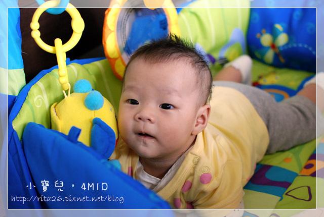 4M1D-1.jpg