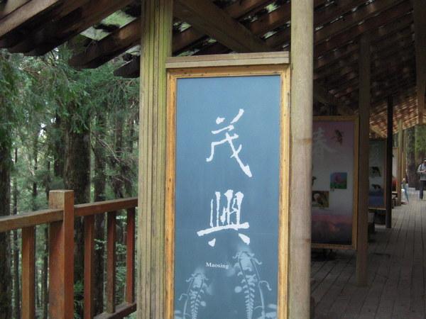 太平山-10