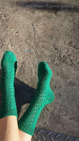 綠迷人手織襪-1