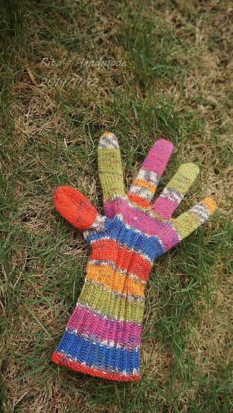 Glove_20141112