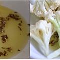 茴香籽白花椰菜