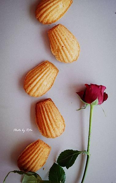 玫瑰純露瑪德蓮