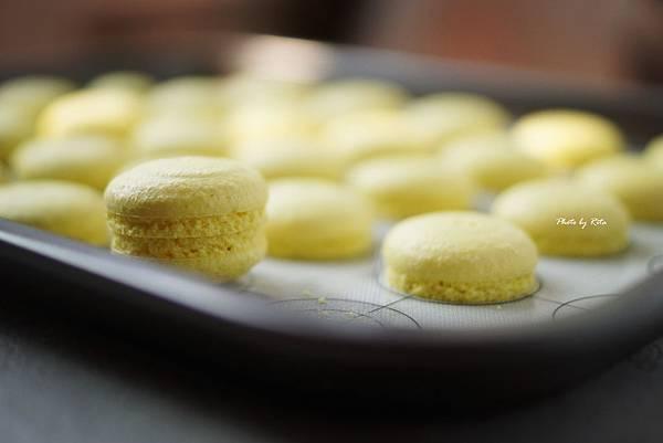 甜檸檬馬卡龍