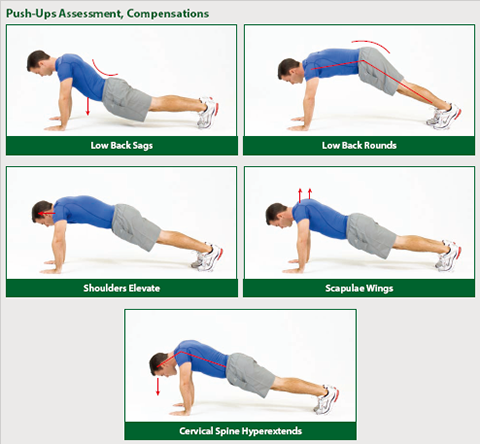 assessment_push_ups