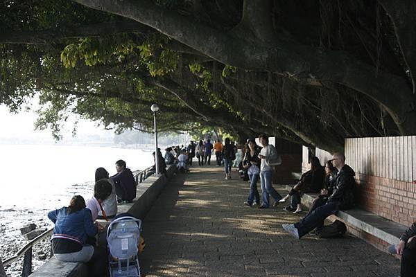 榕堤河畔步道