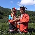 鄒族採茶趣