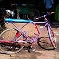 53667_434204103283320_276392096_o 改良腳踏車